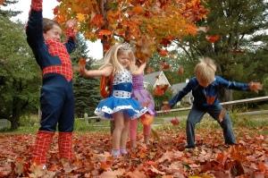 The leaves are falling... the leaves are falling
