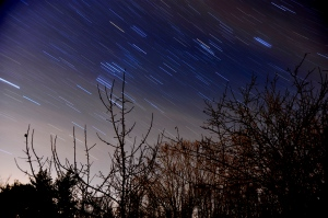 Star Trails with Greg